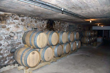 Oak barrels in the cellar of Champagne Xavier Alexandre